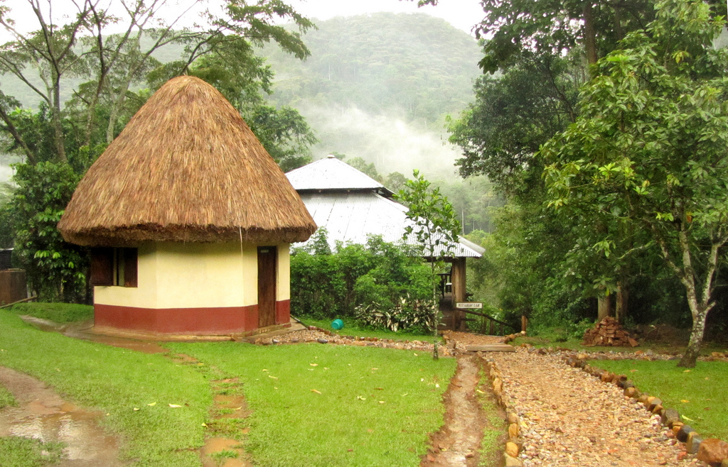 Buhoma accommodation in Bwindi