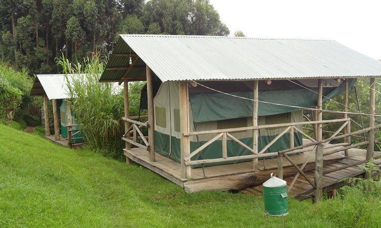 Ruhija Gorilla Friends Resort